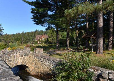 Ruisseau-a-la-pisciculture