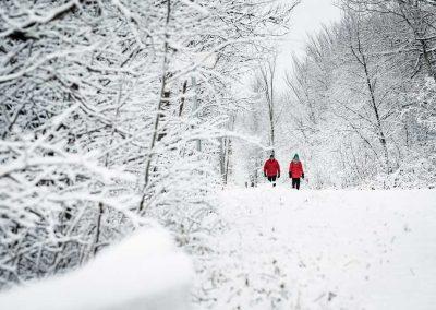 la saison d'hiver sur le P'tit Train du Nord